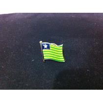 Pin Da Bandeira Do Estado Do Piauí