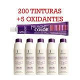 Pack Xxl Coloración Primont: 200 Tinturas + 5 Oxidantes