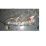 Filer Parachoque Del/izq Original Honda Civic 1996-1998
