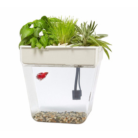 Pecera Back To The Roots-jardin-pescados-acuario