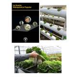 Hidroponia Popular Cultivos Hidroponicos Digital Pdf Ebook
