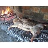 Lechon A La Parrilla De 11 O 12 Kg Primera Calidad