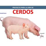 Aprende Cría Porcina Cerdos Cochinos Corrales Instalaciones