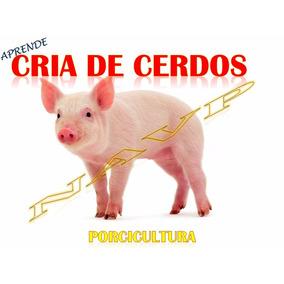 Aprende Granja Cria Porcicultura Porcino Cerdo Envio Gratis
