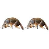 Birdx Coyote 3d Depredador Réplica Visual Miedo Para Pája