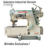 Máquina Costura Industrial Galoneira Yamata Fy31016 + Barato