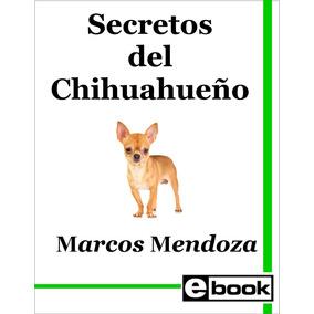 Chihuahua - Libro Entrenamiento Cachorro Adulto Crianza