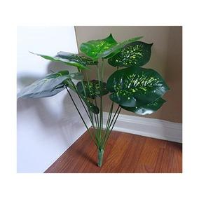 Planta palmera acai en mercado libre m xico for Plantas decorativas artificiales df