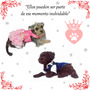 Modista Canina By Katiko Ropa De Fiesta/casual/sale/outlet