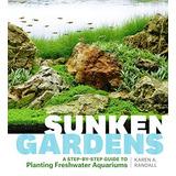 Sunken Gardens Una Guía Paso A Paso Para Plantar Acuarios D