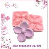 Frisador Flor De Eva - Resina Rosa Mexicana 9 X 9 Cm