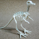 Playmobil Esqueleto De Dinosaurio Animales