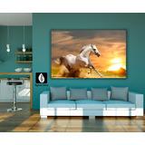 Cuadro Decorativo Tayrona Store Caballo 00 70x50cm