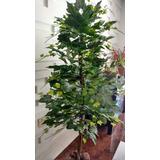 Planta Artificial Árvore Uva De Primavera 1,60mt De Altura
