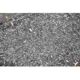 Casca De Arroz Carbonizada Substrato P/ Plantas (pitaya) 1kg