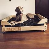 Cama Para Perros/razas Grandes