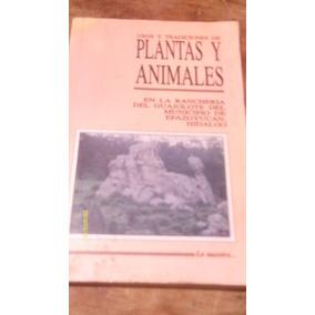 Usos Y Tradiciones De Plantas Y Animales En La Rancheria Del