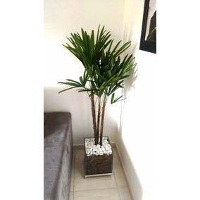 Palmeira Ráfia Vaso De Vidro 30x30cm Promoção 12x S/ Juros