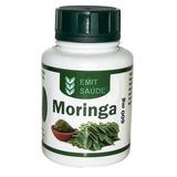 Moringa Oleifera 60 Cáps 600mg (6 Potes)