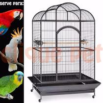 Viveiro Veneza Arara Cacatua Papagaios Ring Neck 12x Sjuros.