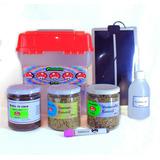 Kit Completo Cultivo De Hongos (pequeño)