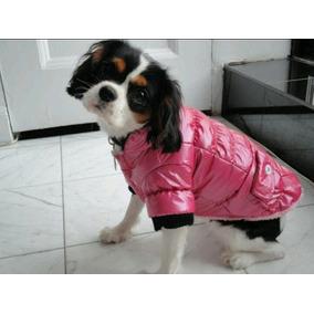 Abrigo Impermeable Chamarra Royal Pets Para Perro Talla S