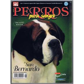 Revista Perros Pura Sangre San Bernardo Agosto 2000