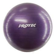 Pelota Pilates 65 Cm Yoga Para Esferodinamia Proyec Gym