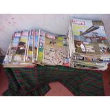 Revistas Super Campo - Desde Año 1995 Hasta 2008 Total 66 Re