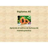 Aprenda El Cultivo De Lechosa, Envío Gratis!!!+ Obsequio
