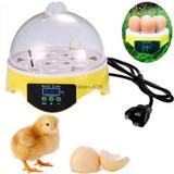 Mini 7 Huevos Pollo Pato Codorniz Huevo Las Aves De Corral