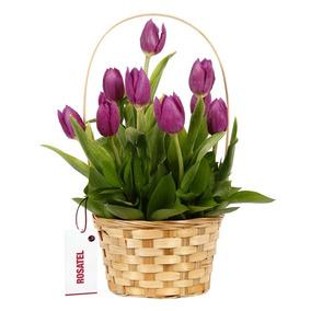 Canasta Rosatel Con 10 Tulipanes