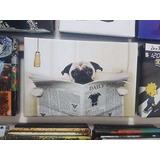 Cuadro Perro Pug Diario Baño Mascota Funny Pet 40x60cm Envio