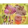 Abejas , Apicultura, Flores Mint