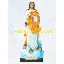 Imagem Nossa Senhora Conceição Estatua 40cm Escultura Gesso
