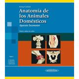 Anatomía De Los Animales Domésticos - Konig .liebich Tomo 1