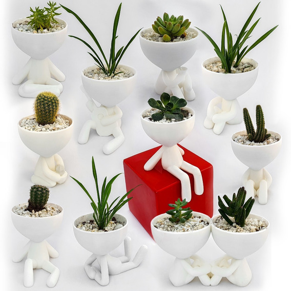 11 Macetas 3decofriendly Suculentas Cactus Robert Plant
