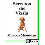 Vizsla Libro Entrenamiento Cachorro Adulto Crianza Canina
