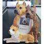 Porta Retrato Perro Pitbull , Tamaño 9 X 13 Cms