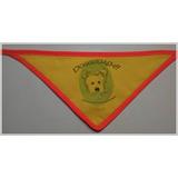 Paliacates Para Estéticas Caninas Con Tú Logo