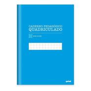 Caderno  Capa Dura  96 Fls Quadriculado Azul   Pt 1 Un