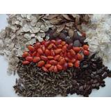 Semillas Forestales Maderables, Especies Nativas Exoticas Im