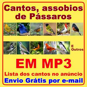 Canto Assobio De Passaros, Aves, Passarinhos Em Mp3 Download