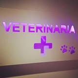 Cartel Luminoso Personalizad Veterinaria Petshop Led Control