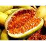 Sementes De Maracuja Banana Tumbo Fruta Doce Flor Rosa Mudas