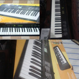 Organo Casio Ctk-245 Nuevo