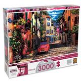 Quebra-cabeça 3000 Peças Rua Florida 03201 Grow