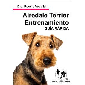 Manual Del Airedale Terrier Entrenamiento Rapido