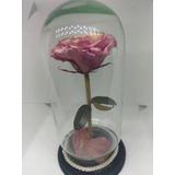 Rosa Natural Rehidratada Duración De 10 Años Para 14 Febrero