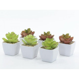 Mini Cactus Suculentas Planta Artificial Decorativa X 12u